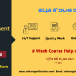 Online Assignment Help