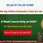 Take my online Economics class for me